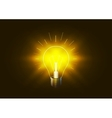 Bright lighting bulb with golden light in the dark vector image vector image