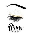 brow bar logo vector image
