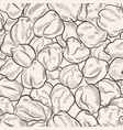 chickpea sketch seamless pattern vector image