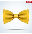 Realistic yellow bow tie vector image vector image