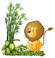 A lion showing his sharp jaw vector image vector image