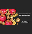 autumn time banner with apples and walnuts vector image vector image