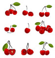 cherry in different ways vector image vector image