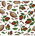 cocoa branch seamless pattern superfood vector image vector image