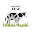 cow flat style farm animal icon templates vector image