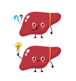 cute liver with question mark and lightbulb vector image vector image