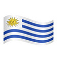flag of uruguay waving on white background vector image