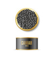 realistic detailed 3d black caviar can set vector image vector image