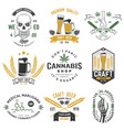 set medical cannabis and craft beer badge vector image vector image