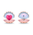 shells with ring with pearl and big pink heart vector image