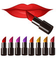 woman lips and many color lipsticks vector image
