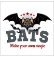 Bats - and inspirational vector image vector image