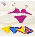 Bikini vector image