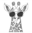 giraffe wearing eyeglasses hand drawn vector image