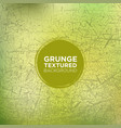 grassy grunge background with cracked texture vector image vector image