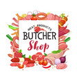 meat products banner vector image vector image