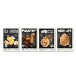 chicken realistic posters set vector image vector image