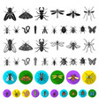 different kinds of insects flat icons in set vector image