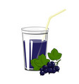 glass with blackcurrant juice vector image