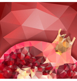 pomegranate macro polygonal design vector image vector image