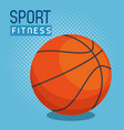 basketball balloon sport icon vector image