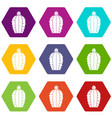 blooming cactus icon set color hexahedron vector image vector image