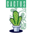cactus house plant vector image vector image