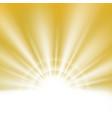 center of summer sunburst light effect on clean vector image