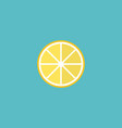 flat icon lemon element of vector image