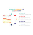 human teeth tooth structure infographic template vector image