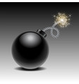 round black bomb ready to explode with lit fuse vector image