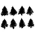 set of fir tree silhouettes black grunge vector image vector image