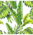 tropical plants seamless background vector image vector image