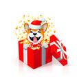 happy cartoon puppy in gift box wearing santas hat vector image