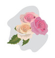 beauty exotic roses and nice leaves vector image vector image