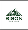 bison logo templates vector image vector image