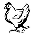 chicken icon chicken silhouette isolated vector image vector image