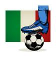 italy soccer team symbol vector image vector image
