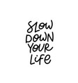 slow down your life calligraphy quote lettering vector image vector image