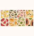 trendy set minimalistic summer tropical fruit vector image