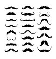 mustaches icons set vector image