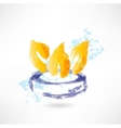 burner grunge icon vector image vector image