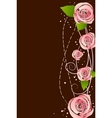 pink roses vector image vector image