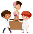 science student learning anatomy vector image