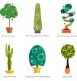 set indoor tree home plants in pots vector image