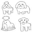set of dog shih tzu vector image
