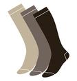 Set of long socks vector image vector image