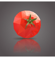 tomatoe triangle vector image vector image