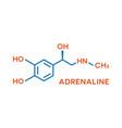 adrenaline hormone molecular formula human body vector image vector image