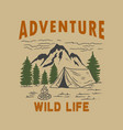 adventure wild life vintage design with mountains vector image vector image